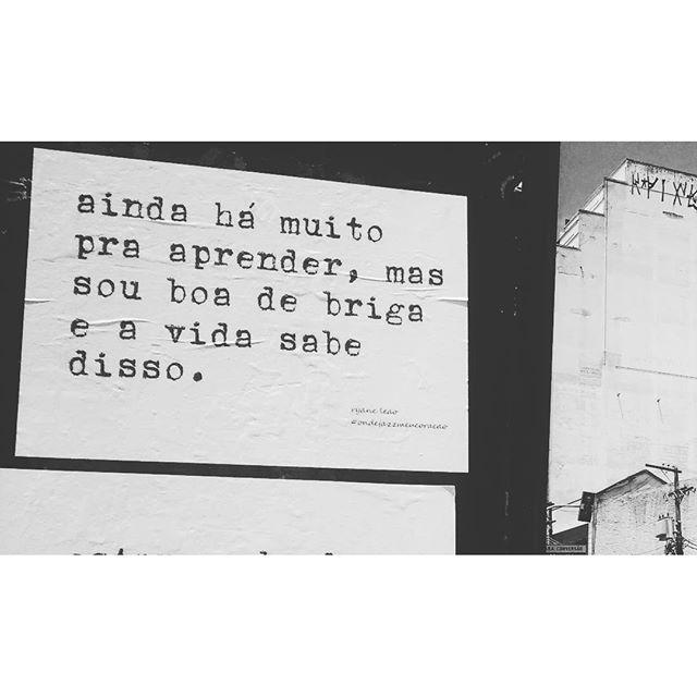 sou boa de briga. todos os textos e lambes são de autoria de @ryaneleao. #ondejazzmeucoracao #streetartsp #011 #artederua #intervençãourbana #splovers #vozesdacidade #lamblamb #sp #lambelambe #olheosmuros #osmurosfalam #arteurbana #vinarua #acidadefala #olheosmuros #poesiaderua #asruasfalam #oqueasruasfalam #pelasruas #taescritoemsampa #urbanart #pelosmuros #txturbano #saopaulo #ruaspoeticas #olheasruas #ryaneleao #sp4you #silenciodasruas
