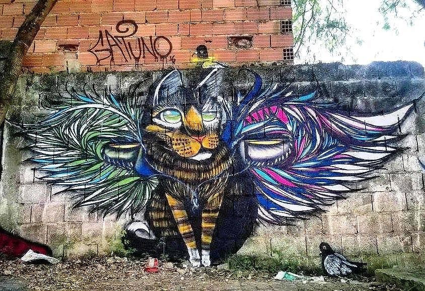 @gatunoxama нарисовал в Сан-Паулу. #gatuno #graffitisp #graffitisaopaulo #streetartsp #streetartbr #igersbrazil #ig_brazil #graffitibrazil #граффити_tschelovek #streetart #urbanart #graffiti #mural #стритарт #граффити #wallart #graffitiart  #artederua #arteurbana #streetart_daily #streetarteverywhere