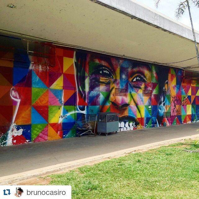 Lindooooo!!!  ・・・ Arte grafite no Parque Ibirapuera,SP. - Photo by @brunocasiro **** #kobrastreetart #kobra #grafitesp #grafite #graffiti #streetartsp #mysynchronicity #artederua #arteurbana #urbanart #sampagraffiti #streetart #parqueibirapuera #saopaulo #saopaulowalk #parqueibirapuerasp #aquelasp #saopaulocity #olharesdesampa #saopaulo_originals #splovers #sparte #rolesp #mybeautifulsp #sp4you #supersaopaulo #exploresampa #sampaclick #spclicks