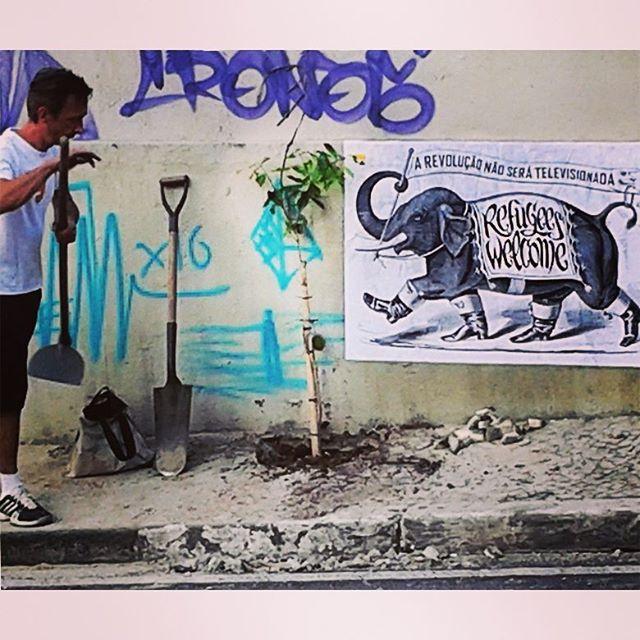 REFUGEES WELCOME ...es que Dumbo encontra com ativistas da ecologia urbana. (SP é muito mais que ganância e ódio) #major_art #revolução #arteurbana #ruasquefalam #streetart #streetartsp #manifesto #cartaz #lambelambe #artederuasp #lambe #wheatpaste #spstreetart #streetartbrazil #wallart #spart #urbanartist #urbanintervention #streetartnews #ruasquefalam #taescritoemsampa #oqueasruasfalam #spart #streetarthunter #intervencaourbana #artemarginal #urbanart #pasteup #wallporn #urbanartsp #artecallejero #arevolucaonaoseratelevisionada