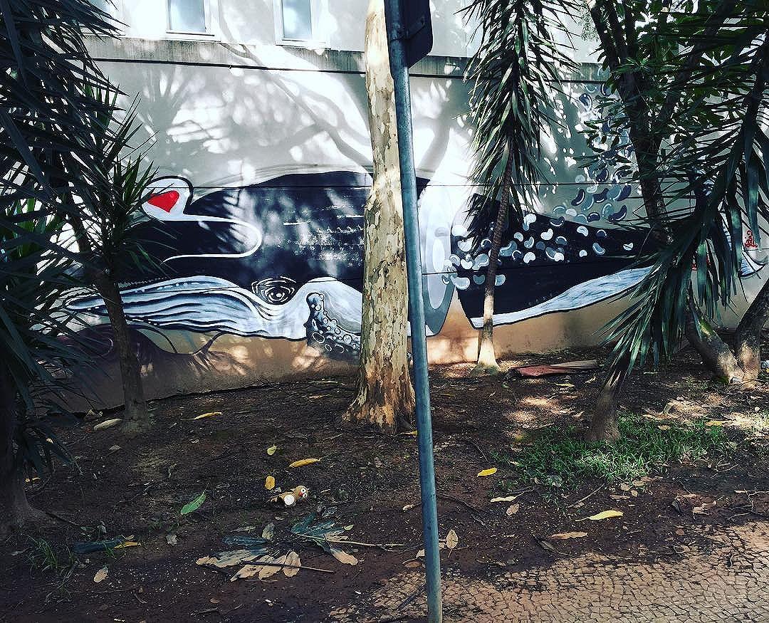 Mais um trabalho entregue pela @blazegallery presente do grafiteiro babou #jardins #jardinpaulistano #graffiti #grafite #grafitero #grafitesp #streetart #streetfashion #streetartsp #becodobatman #instagraffiti #instagraffitiart #instagraff #spray #spraypaint #blazesupply #blazegallery #honeypot #