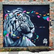Compartilhado por: @samba.do.graffiti em Mar 17, 2016 @ 18:39