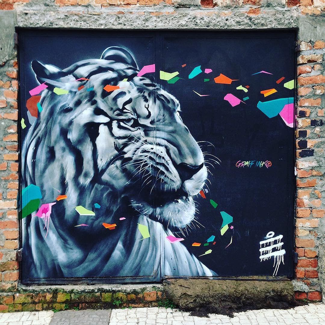 Realistic tiger found in Gamboa (Rio de Janeiro) Artist: @graffink_officiel  #graffink  #sambadograffiti #graffiti #graffiti_clicks #grafite #graf #streetart #streetartsp #streetphoto #streetarteverywhere #streetartphotography #spray #RioGRAFITE #spraypaint #urbanwall #urbanart #wallart #rio #brasil #rsa_graffiti #DSB_graff #braznu #rio2016 #tv_streetart #riodejaneiro #tv_sa_simplicity_graff #streetartofficial