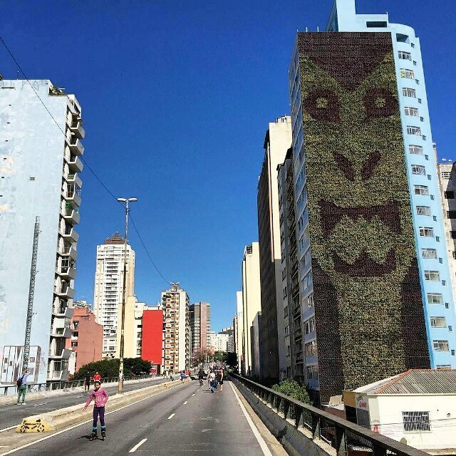 @wedropirz в Сан-Паулу для @movimento90. Photo by @jabbakarin. #wedropirz #pedropirz #saopaulograffiti #graffitisp #graffitisaopaulo #streetartsp #streetartbrazil #streetartbrasil #streetartbr #brazilstreetart #graffitibrasil #brasilgraffiti #brazilgraffiti #igersbrazil #ig_brazil #graffitibrazil #streetart #urbanart #graffiti #wallart #graffitiart #wallpainting #muralpainting #artederua #arteurbana #muralart #graffitiwall #graffitiartist #streetart_daily #streetarteverywhere