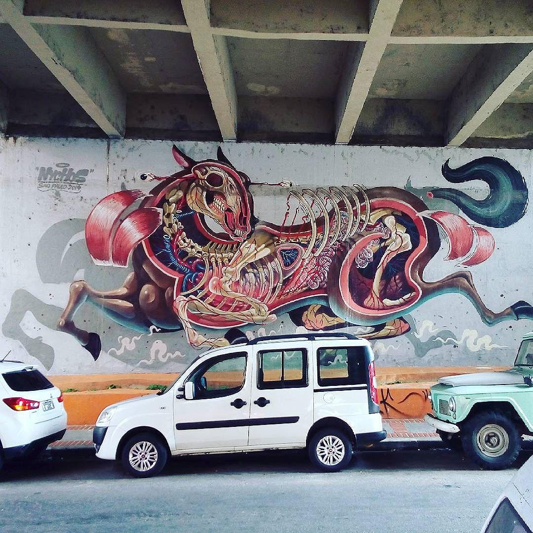 By @nychos. São Paulo. 27/05/2016 | vandalogy #streetart #streetartsp #graffiti #pinheiros #nychos