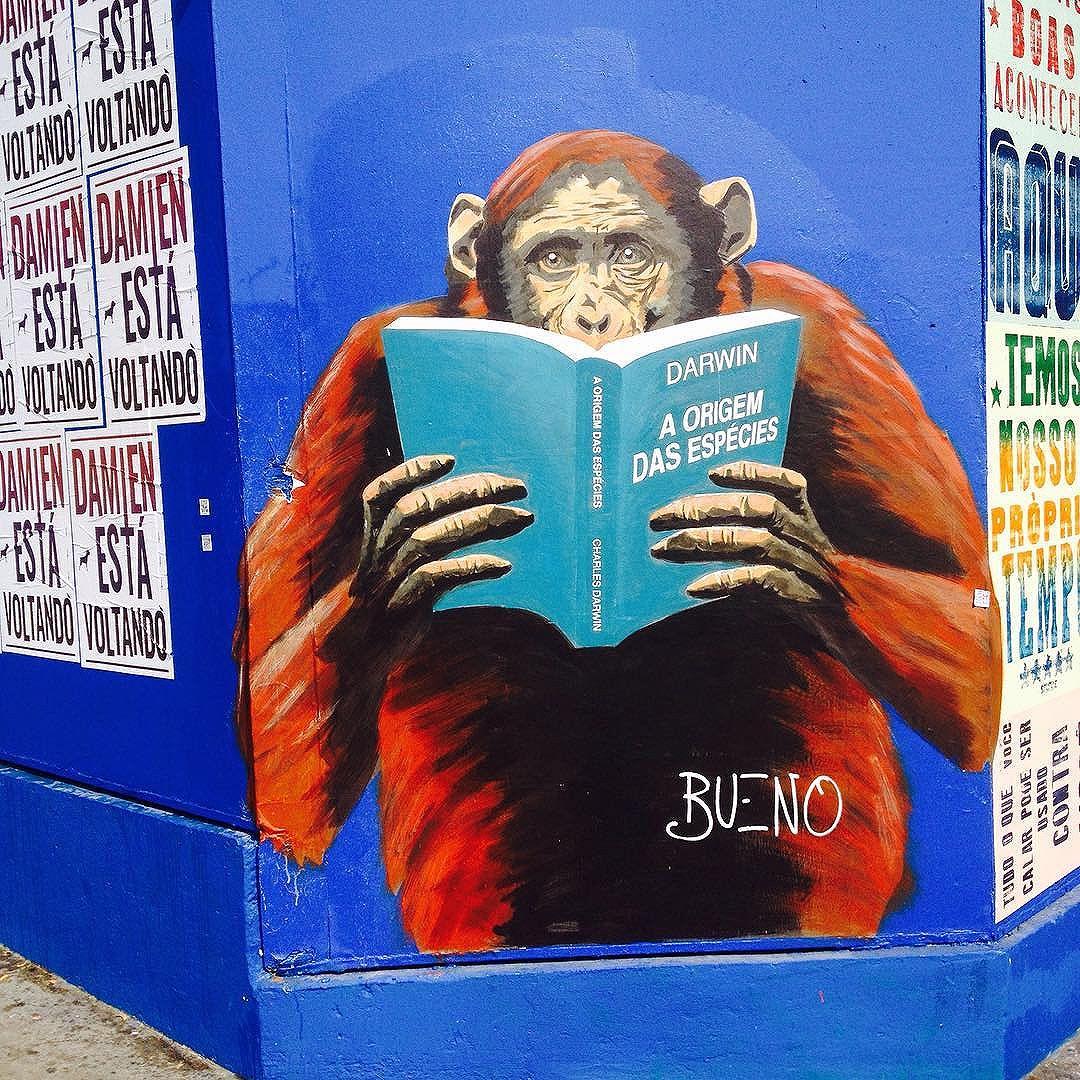 Cores de Sampa.. #atelieurbano #streetartsp #streetart #artederua #artederuasp #graffiti #graffitisp #arte