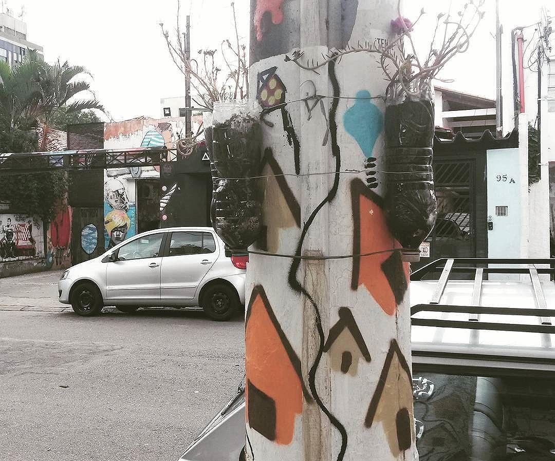 spreading #love and #nature in the city  #floresnocimentosp  #saopaulo . .. #streetartsp #streetart #colorful #ig_street #rsa_streetview #tv_streetart #jj_streetphotography #streetphotography #streetshared #urbanandstreet #brstreet #urban #urbanlandscape #city #saopaulocity #saopaulowalk #splovers #icu_brazil #instalike #vscocam #street #street_perfection #ok_streets #urbano