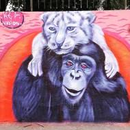 Compartilhado por: @samba.do.graffiti em May 25, 2016 @ 17:36