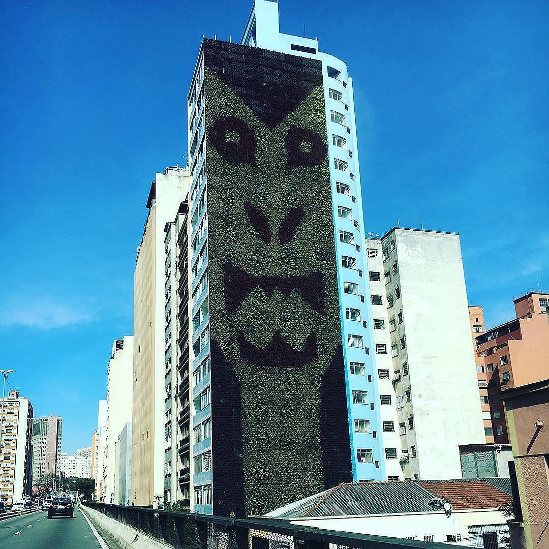 Bom dia, São Paulo! Sábado ensolarado, 12ºC #minhocão #jardimvertical #streetartsp
