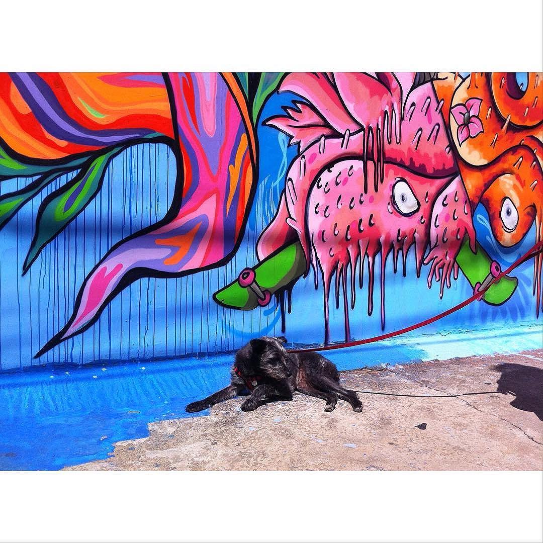 Street Art em Sampa São Paulo-SP_Brasil_Data: 20140813 Câmera: #iPhone4 Photo: J Goncalves #originals #GlobalStreetArt #splovers #sousampa #sp4you #saopaulonline #saopaulowalk #brasilbr55 #saopaulocity #ig_saopaulo #TopSampaPhotos #cidadedagaroa #brazil_repost #vejasp #spinfoco #euamosp #saopaulocity