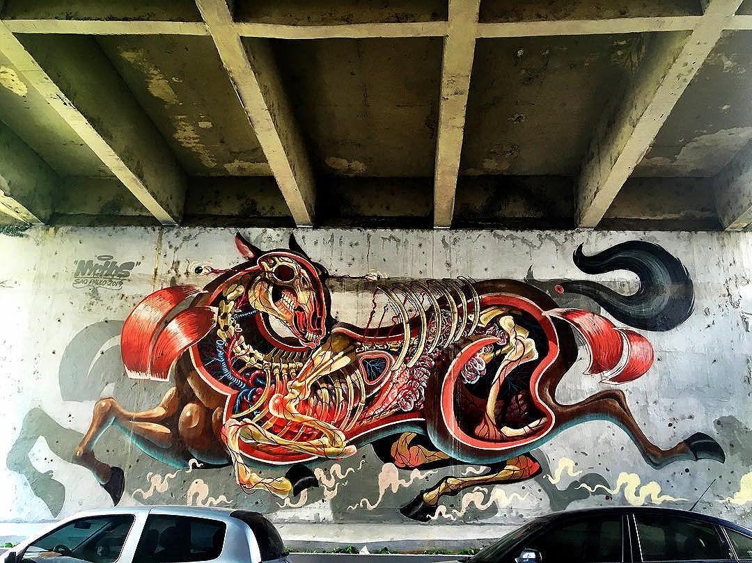 @nychos #wallart #graffiti #streetarteverywhere #streetartistry #streetartandgraffiti #streetphotography #streetphotographer #street #streetphoto #urban #streetartsp #saopaulo #sp #brasil #brazil