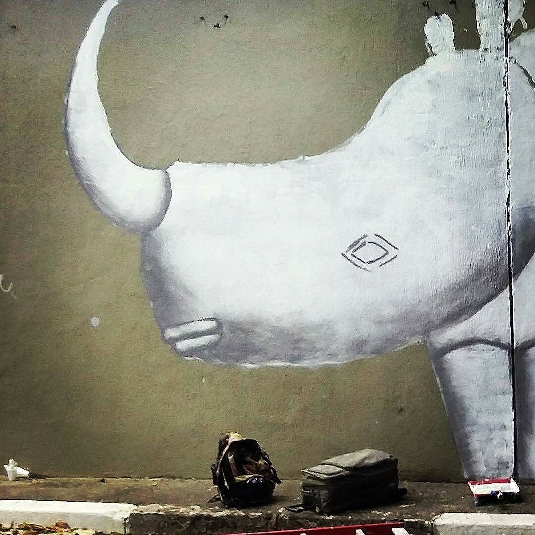 @Regrann from @cadumen -  Daqui a pouco de madrugada continua o trabalho no Túnel Noite Ilustrada em São Paulo.  #cadumen #saopaulowalk #graffiti #rua #streetart #welovestreetart #andorinhas #streetarteverywhere #avenidarebouças #streetartsp #mural #spray #total_urbanart #spraypaint #sampa #artenarua #artederua #grafite #grafitesp #arteurbana #streetart_daily #brstreet #urbannation #wallart #rhino #streetartandgraffiti #brazilianart #rinoceronte #fromthestreets #streetartofficial