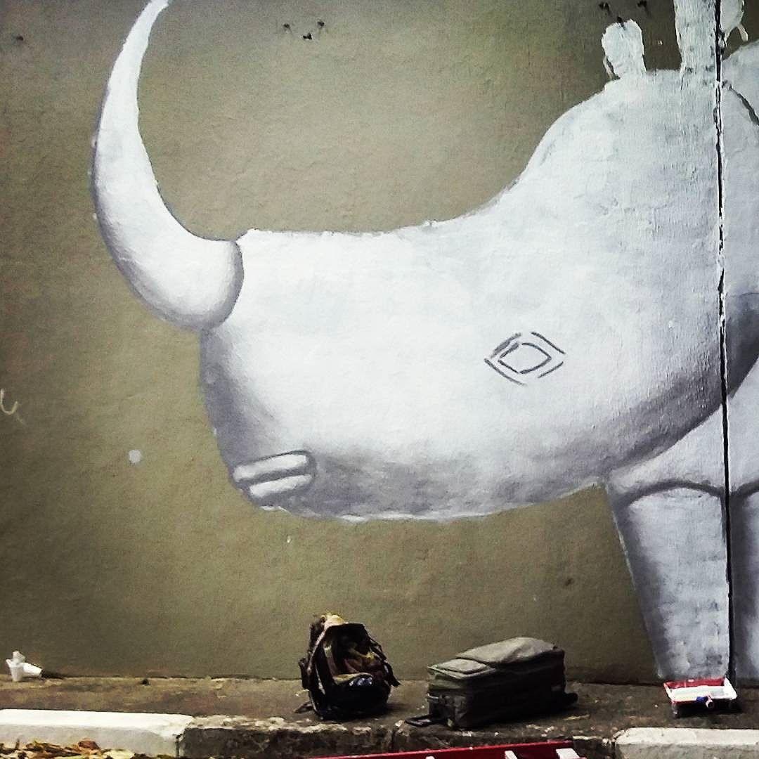 Daqui a pouco de madrugada continua o trabalho no Túnel Noite Ilustrada em São Paulo.  #cadumen #saopaulowalk #graffiti #rua #streetart #welovestreetart #andorinhas #streetarteverywhere #avenidarebouças #streetartsp #mural #spray #total_urbanart #spraypaint #sampa #artenarua #artederua #grafite #grafitesp #arteurbana #streetart_daily #brstreet #urbannation #wallart #rhino #streetartandgraffiti #brazilianart #rinoceronte #fromthestreets #streetartofficial