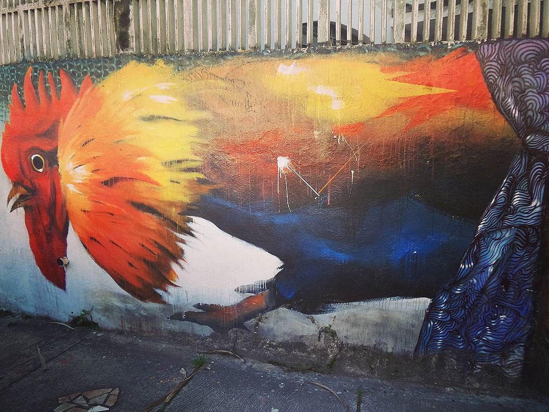 #galo #galodoido #graffiti #graffitiart #graffitisp #streetartsp #sampagraffiti #streetartist #streetstyle #streetphotography #streetphotographers #ofantasticomundodografite #wallporn #sprayart #aerosolart #be_one_urbanart #graffiti_of_our_world #streetartglobal #vilamadalena #saopaulo