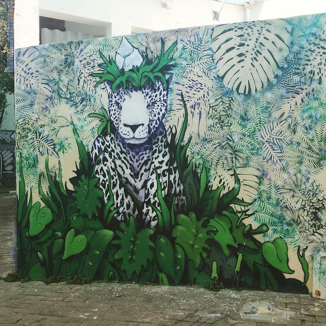 #graffiti #graffitiart #streetartsp #graffitisp #sampagraffiti #streetartist #streetstyle #streetphotography #streetphotographers #ofantasticomundodografite #wallporn #sprayart #spraywall #streetartglobal #aerosolart #be_one_urbanart #graffiti_of_our_world #onça #natureza #becodobatman #vilamadalena #sampa #batmansalley