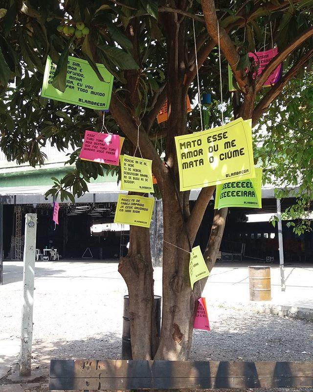Hoje tem a Festa Giovanna Chama o Síndico lá Nos Trilhos com uma árvore bem brega do jeito que a gente gosta!  #streetartsp #011 #artederua #intervencaourbana #splovers #vozesdacidade #vozesdarua #lambelambe #lamblamb #olheosmuros #osmurosfalam #arteurbana #vinarua #acidadefala #poesiaderua #oqueasruasfalam #pelasruas #taescritoemsampa #urbanart #pelosmuros #txturbano #saopaulo #sp #brega #twister #nostrilhos