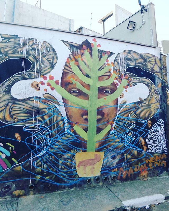 #nenamadalena #graffiti #graffitiart #streetarteverywhere #streetartsp #graffitisp #sampagraffiti #streetartist #streetstyle #streetphotography #streetphotographers #ofantasticomundodografite #urbano #intervencaourbana #arteurbanasp #be_one_urbanart #graffiti_of_our_world #streetartglobal #vilamadalena #saopaulo #becodobatman #batmansalley
