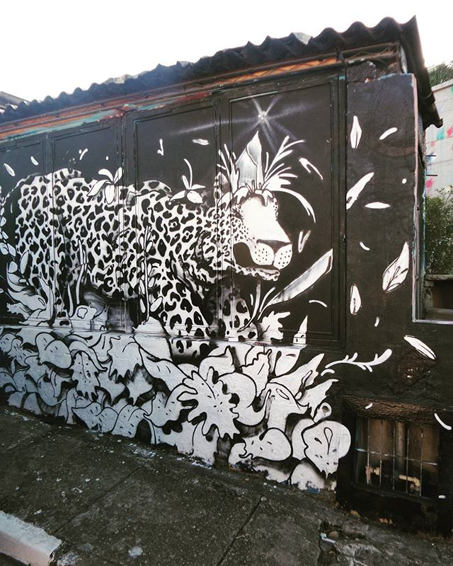 #onça #graffiti #graffitiart #graffitisp #streetartsp #sampagraffiti #becodobatman #vilamadalena #spraywall #saopaulo #ilovesp #streetarteverywhere #streetstyle #streetphotography #streetphotographers #ofantasticomundodografite #wallporn #sprayart #aerosolart #be_one_urbanart #be_one_urbanart #graffiti_of_our_world #streetartglobal