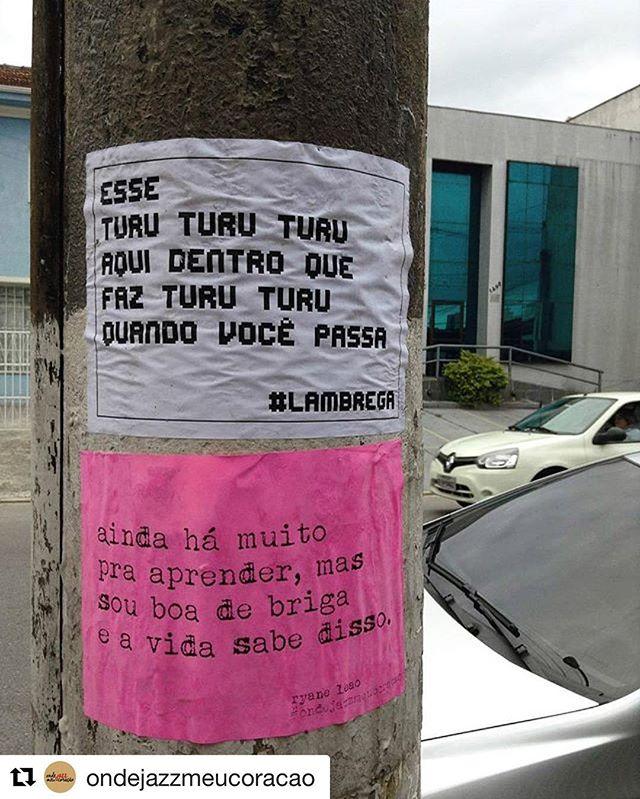 Regram: @ondejazzmeucoracao + @lambrega   #nocaosdesampa #ondejazzmeucoracao  #streetartsp #011 #artederua #intervençãourbana #splovers #vozesdacidade #lamblamb #sp #lambelambe #olheosmuros #osmurosfalam #arteurbana #vinarua #acidadefala #olheosmuros #poesiaderua #asruasfalam #oqueasruasfalam #pelasruas #taescritoemsampa #urbanart #pelosmuros #txturbano #saopaulo #ruaspoeticas #olheasruas #ryaneleao