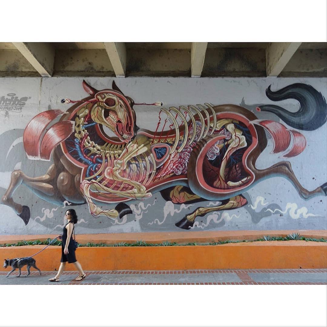 Street Art em Sampa SãoPaulo_SP_Brasil_Data:20141012 Câmera: #SONY_RX100M2 Photo: J Goncalves #original #splovers #sousampa #sp4you #saopaulonline #saopaulowalk #brasilbr55 #saopaulocity #ig_saopaulo #TopSampaPhotos #cidadedagaroa #brazil_repost #vejasp #spinfoco #euamosp #saopaulocity #catracasp #vcnouol #vilamadalena #instagrambrasil