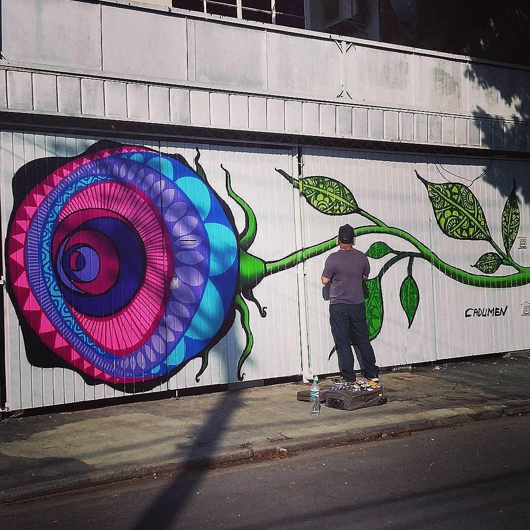 Trabalho para o @institutoflorgentil   #cadumen #florgentil #graffiti #rua #streetart #welovestreetart #flor #streetarteverywhere #vilamadalena #streetartsp #mural #spray #total_urbanart #spraypaint #sampa #artenarua #artederua #grafite #grafitesp #arteurbana #streetart_daily #brstreet #urbannation #wallart #flores #streetartandgraffiti #brazilianart #vilamada #fromthestreets #streetartofficial