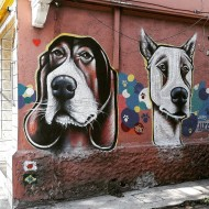 Compartilhado por: @samba.do.graffiti em Dec 07, 2016 @ 14:00