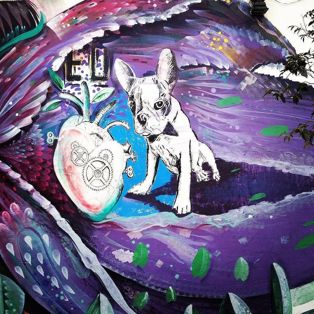 Pelas ruas de São Paulo #grafitesp #streetartsp #graffiti #instagraffiti #mural #saopaulocity #art #urbanart #color #artwork #brazil #sp4you #vscocam #instasampa #arteurbano #rua #sp #olharesdesampa #brasil #ruasp #grafite #graffitiart #oscarfreire #streetart #color #dog