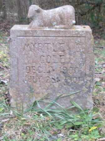 COLE, MYRTLE G - Anderson County, Tennessee   MYRTLE G COLE - Tennessee Gravestone Photos