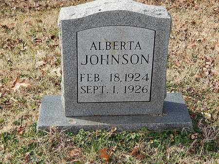 JOHNSON, ALBERTA - Anderson County, Tennessee | ALBERTA JOHNSON - Tennessee Gravestone Photos