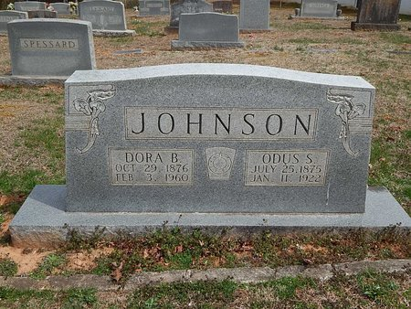 JOHNSON, ODUS S - Anderson County, Tennessee | ODUS S JOHNSON - Tennessee Gravestone Photos