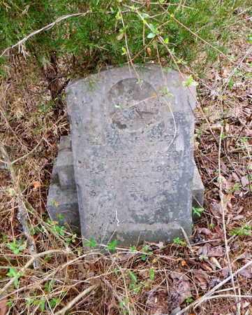 JOHNSON, ELIZA - Anderson County, Tennessee   ELIZA JOHNSON - Tennessee Gravestone Photos