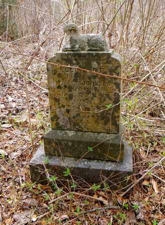 JOHNSON, ELLA J P - Anderson County, Tennessee | ELLA J P JOHNSON - Tennessee Gravestone Photos