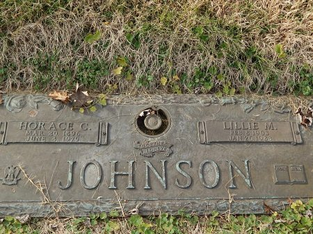 JOHNSON, HORACE C - Anderson County, Tennessee | HORACE C JOHNSON - Tennessee Gravestone Photos