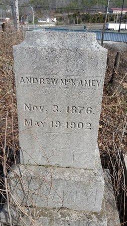 MCKAMEY, ANDREW - Anderson County, Tennessee | ANDREW MCKAMEY - Tennessee Gravestone Photos