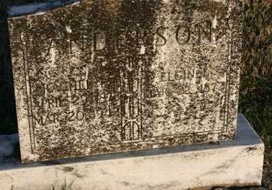 ANDERSON, ELGIN LEE - Bledsoe County, Tennessee | ELGIN LEE ANDERSON - Tennessee Gravestone Photos