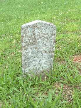 HALE, INFANT - Bledsoe County, Tennessee | INFANT HALE - Tennessee Gravestone Photos