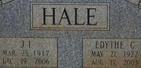 HALE, JOHN I. - Bledsoe County, Tennessee | JOHN I. HALE - Tennessee Gravestone Photos
