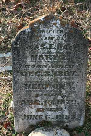 HALE, MARY Z. - Bledsoe County, Tennessee | MARY Z. HALE - Tennessee Gravestone Photos