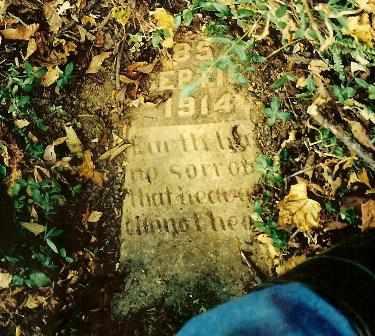 SWAFFORD, JOHN EDWIN - Bledsoe County, Tennessee | JOHN EDWIN SWAFFORD - Tennessee Gravestone Photos