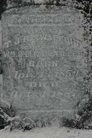 SWAFFORD, RACHEL ELIZABETH - Bledsoe County, Tennessee   RACHEL ELIZABETH SWAFFORD - Tennessee Gravestone Photos