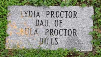 PROCTOR, LYDIA - Blount County, Tennessee | LYDIA PROCTOR - Tennessee Gravestone Photos
