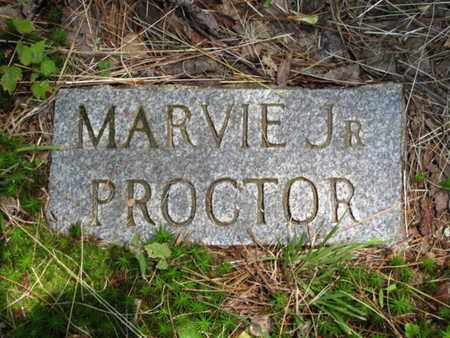 PROCTOR, MARVIN (JR.) - Blount County, Tennessee | MARVIN (JR.) PROCTOR - Tennessee Gravestone Photos