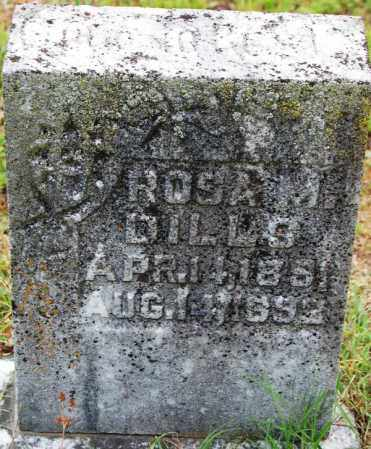 DILLS, ROSA M - Bradley County, Tennessee | ROSA M DILLS - Tennessee Gravestone Photos