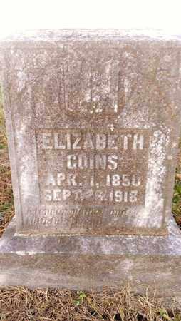 GOINS, ELIZABETH - Bradley County, Tennessee | ELIZABETH GOINS - Tennessee Gravestone Photos