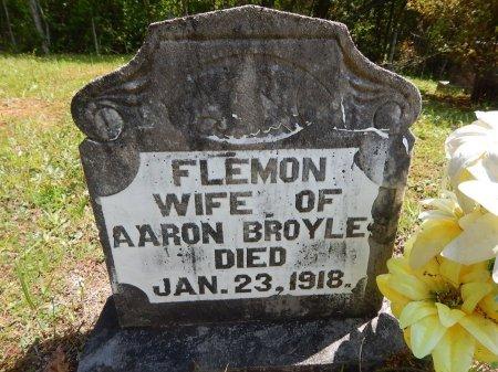 BROYLES, FLEMON - Campbell County, Tennessee | FLEMON BROYLES - Tennessee Gravestone Photos