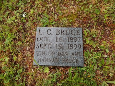 BRUCE, L C - Campbell County, Tennessee | L C BRUCE - Tennessee Gravestone Photos
