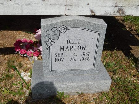 MARLOW, OLLIE - Campbell County, Tennessee | OLLIE MARLOW - Tennessee Gravestone Photos