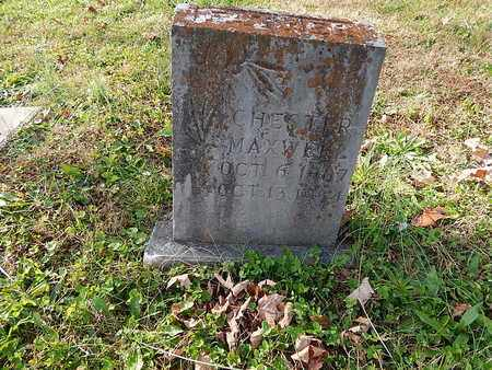 MAXWELL, CHESTER - Campbell County, Tennessee | CHESTER MAXWELL - Tennessee Gravestone Photos