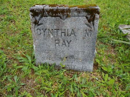 RAY, CYNTHIA M - Campbell County, Tennessee | CYNTHIA M RAY - Tennessee Gravestone Photos