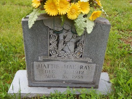 RAY, HATTIE MAE - Campbell County, Tennessee | HATTIE MAE RAY - Tennessee Gravestone Photos